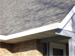 Looking For An Omni Gutter Conversion On Your Home