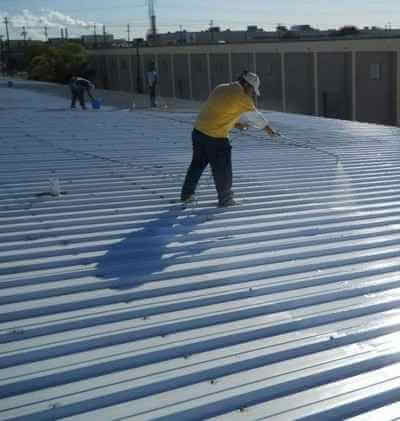roof sealant system